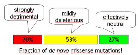missense.png